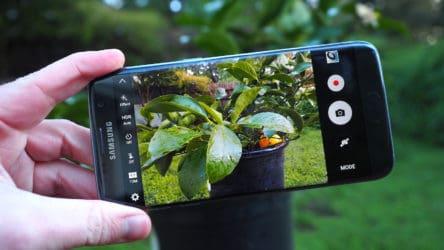 smartphone photography (2)